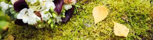 Свадьба осенью в Истра-Холидей - фотографии. Свадебный фотограф в Солнечногорске Сергей Емельянов.
