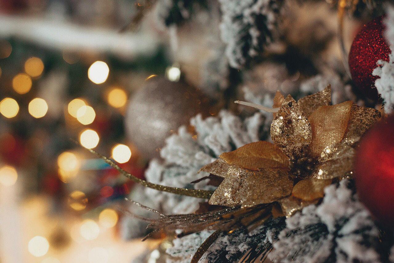 Фотостудия в Солнечногорске - LightStudio