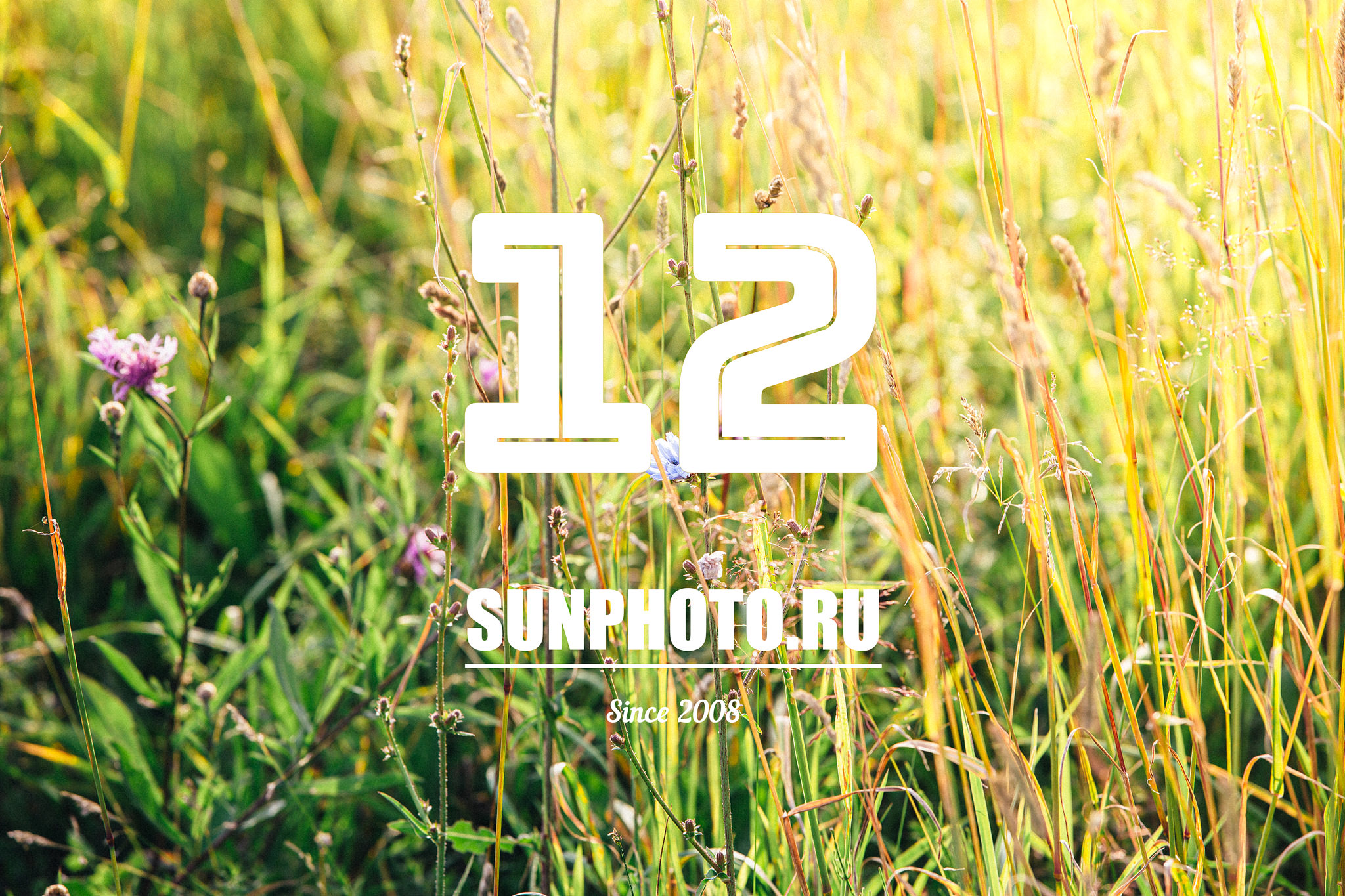 SUNPHOTO.RU - 12 лет